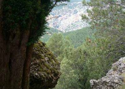 camping-rio-tus-entorno-4