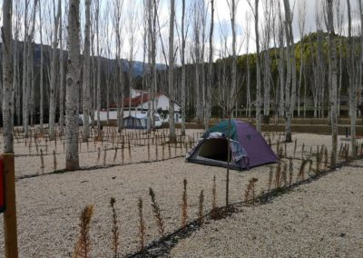 Parcela Camping ECO Yeste Río Tus