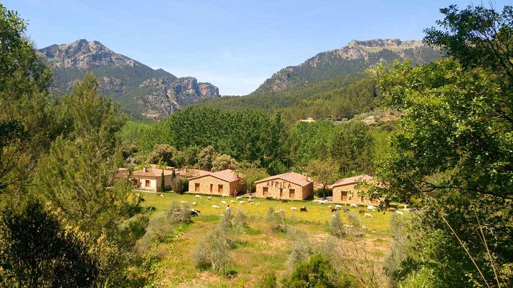 casas-rurales-yeste-albacete-africa-salon-exterior-panoramica